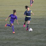 U16 Féminines Match Championnat Samedi 10 Octobre 2015 (36)