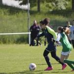 U16-U19 Féminines Tournoi St Jean de Braye Dimanche 15 Mai 2016 (53)